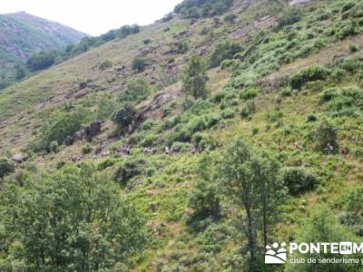 Parque Nacional Monfragüe - Reserva Natural Garganta de los Infiernos-Jerte;senderismo